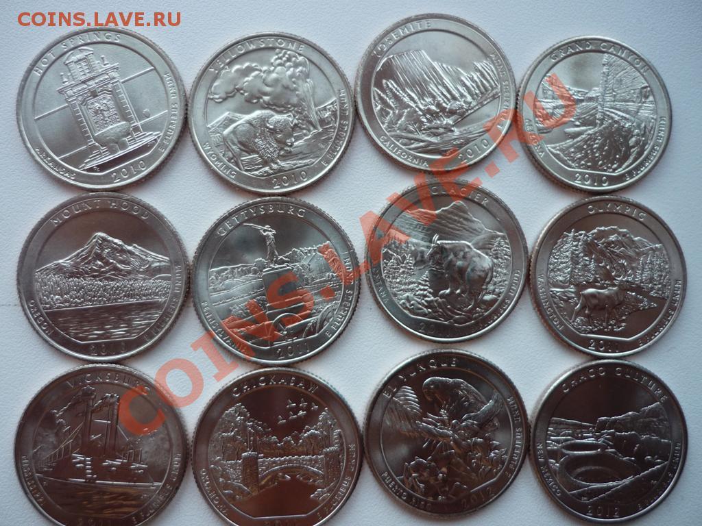 золотые монеты на выставке мяу