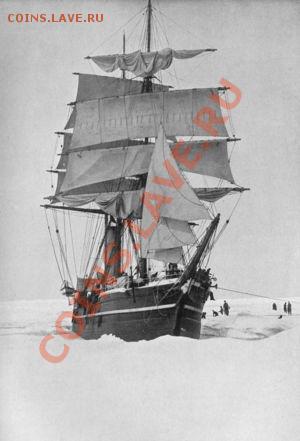 Конструкция «Терра Нова» идеально соответствовала требованиям плаваний в арктических широтах. Впервые барк был использован для научной работы в английской экспедиции Джексона-Хармсворта в 1894 — 1897 годах. «Терра Нова» досталась роль вспомогательного судна экспедиции.В 1898 году судно приобрела судоходная компания «Боуринг Бразерз» (англ. Bowring Brothers).Барк использовался для добычи тюленей у Ньюфаундленда.В 1903 году «Терра Нова» вместе с подобным же бывшим китобоем «Morning» участвовал в вызволении из залива Мак-Мёрдо запертого льдами барка «Дискавери» (англ. Discovery) Британской антарктической экспедиции 1901 - 1904 годов под командованием Роберта Скотта.В 1905 году барк использовался в поиске и спасении потерпевшей неудачу американской полярной экспедиции Циглера. Судно полярной экспедиции «Америка» (англ. «America») под командованием Энтони Фиала затонуло в ноябре 1903 года у острова Рудольфа. Полярники провели в изоляции на Земле Франца-Иосифа два года, прежде чем в июле 1905 года были эвакуированы барком «Терра Нова» после нескольких недель трудного плавания сквозь льды.В 1909 году барк «Терра Нова» был приобретен для нужд Британской Антарктической экспедиции 1910 — 1913 годов, известной также как «экспедиция Терра Нова».После возвращения из Антарктики в 1913 году, барк «Терра Нова» был вновь выкуплен своими прежними владельцами и вернулся к старой работе — промыслу тюленей вблизи Ньюфаундленда. 13 сентября 1943 года барк был повреждён льдом и затонул у юго-западной оконечности Гренландии. Экипаж был спасён ледоколом береговой охраны США «Саусвинд» .11 июля 2012 года обломки «Терра Нова», покоящиеся на океанском дне, были обнаружены в ходе экспедиции, организованной Schmidt Ocean Institute,однако запрещено указывать точное местонахождение и глубину находки, чтобы предохранить обломки корабля от «нежелательного внимания».Носовая фигура была снята с «Терра Нова» в 1913 году и выставлена в «Национальном музее Уэльса».Колокол с «Терра Нова» хранится в британ