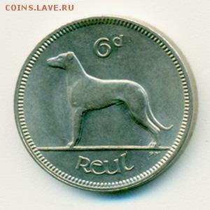 Монеты с изображением собак. - ирландия-6п