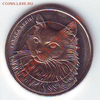 Кошки на монетах - турция кошка