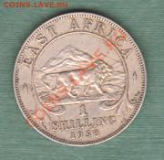 """Британская Восточная Африка, 1 Шиллинг 1950 """"Лев"""" (04.10) - s12"""