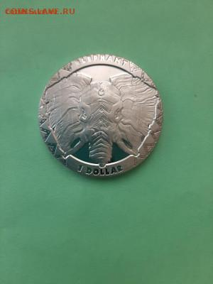 1 доллар 2019 год Слон. Монета кронового типа. - GZgEmsNWLZ4