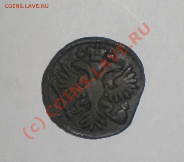 деньга 1731 года, без черты над годом - P8110091_thumb