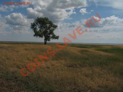 Кузбасский коп - IMG_3837