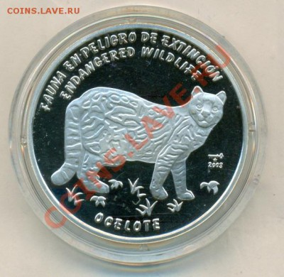 Кошки на монетах - сканирование0007