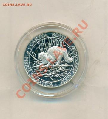 Кошки на монетах - сканирование0062