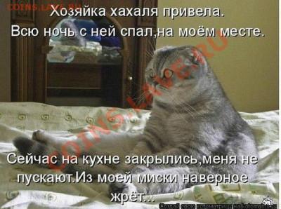 юмор - UIeEHaFvZys