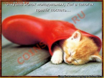 юмор - кот в сапогах