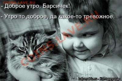 юмор - снимок