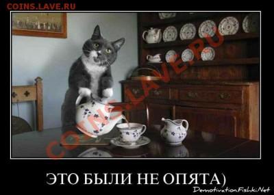 """Игра """"Железная Логика"""" - op"""