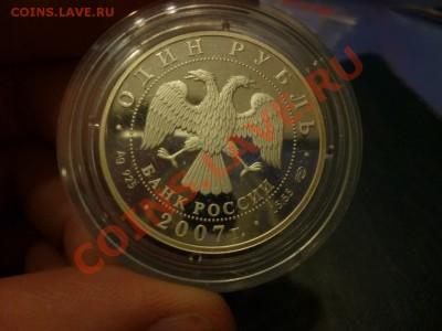Красная книга степной лунь 2007 15.02 - P1000792.JPG