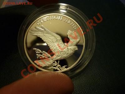 Красная книга степной лунь 2007 15.02 - P1000791.JPG