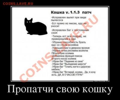 юмор - Demotivators_14