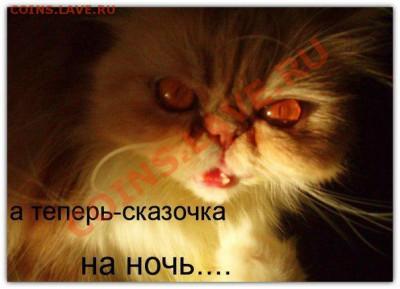 юмор - K5ZVmED_B9A