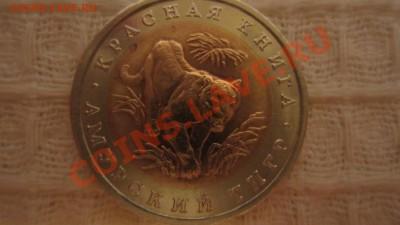 КК. Амурский тигр 1992 г. До 01.10.13 г. в 22.00 мск - IMG_4977
