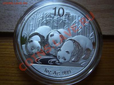 Панда 2013 - PB150226.JPG