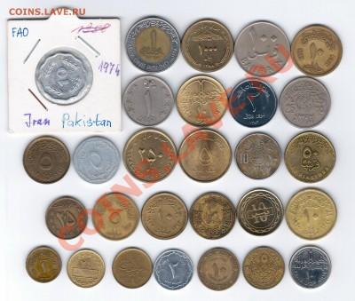 28 разных монет арабских стран до 03.10.2013 г. 21:00 мск - арабы 1