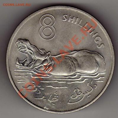 ГАМБИЯ 8 ШИЛЛИНГОВ 1970 БЕГЕМОТ 03.10.13 В 22.00МСК (6363) - img237