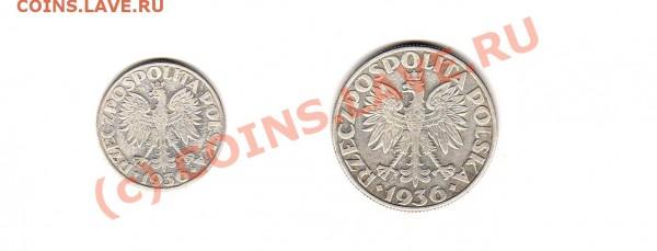 монеты 1-й Польской Республики 1923-1939 г.г. - img873
