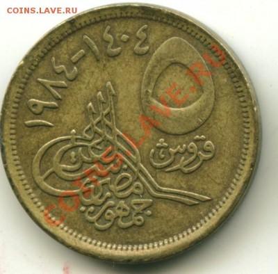 5 пиастров Египет до 05.10.2013 22-00мск - египет2