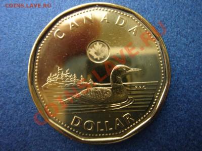 Канада: 1 доллар 2013 UNC из ролла до 07.10.13, 22-00 - Канада доллар 2013-2.JPG