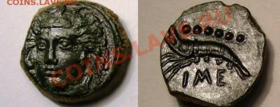 Монеты с крабами, лобстерами, креветками - Сицилия, г. Гимера, креветка