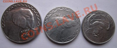 монеты 1 2 и 5 динара алжир - 33