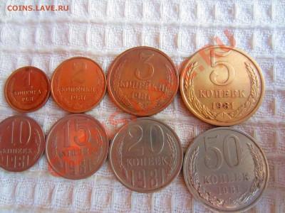 Погодовка 1981 г. с рубля!!! до 5.12.13 в 22.00 мск - IMG_5066