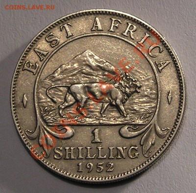 Брит. Вост. Африка, 1 Шиллинг 1952 (03.12) - P1012703.JPG