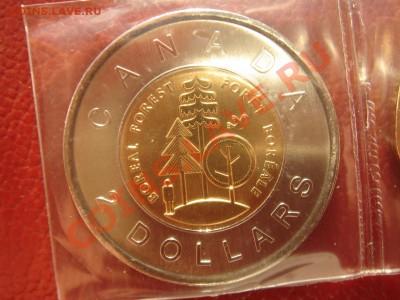 Канада: 2$ 2011 Северный лес до 09.12.13 22-00 - Канада 2 доллара лес -1.JPG