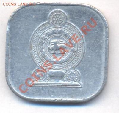 Цейлон (Шриланка) 5 центов 1978 г.  06.12.13 г. 22-00 МСК . - Цейлон 5 ц 1978 1