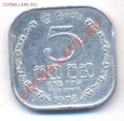Цейлон (Шриланка) 5 центов 1978 г.  06.12.13 г. 22-00 МСК . - Цейлон 5 ц 1978