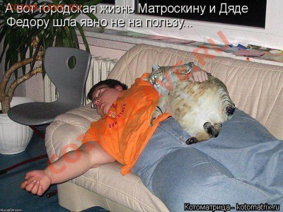 юмор - кот и дядя федор