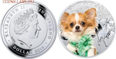 Чеканил ли кто монету с Чихуахуа (порода собаки)? - 12[1]