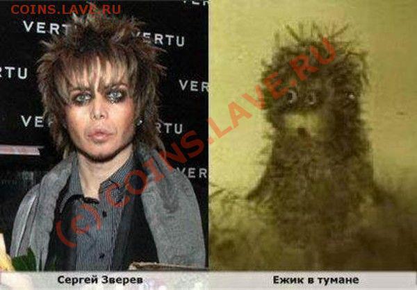 юмор - shodstvo012