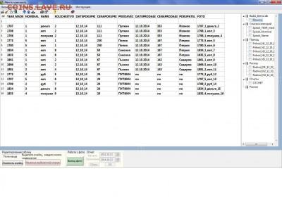 Программа Mechta(Numizmat). - Скрин основной таблицы