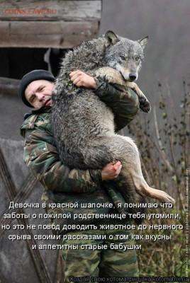 юмор - kotomatritsa_QL