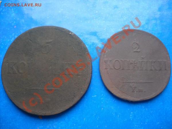 обе найдены в Башкирии на одной полянке - 2010 031