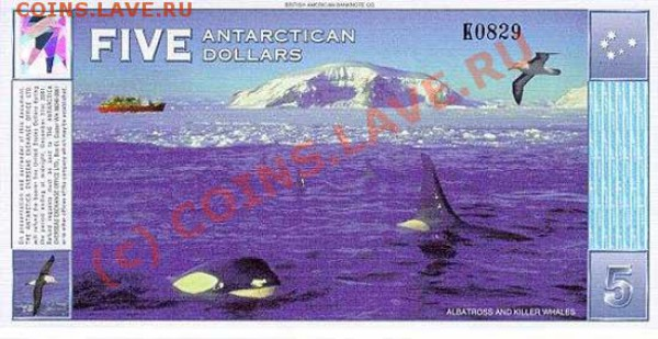 Животные на банкнотах - 5r