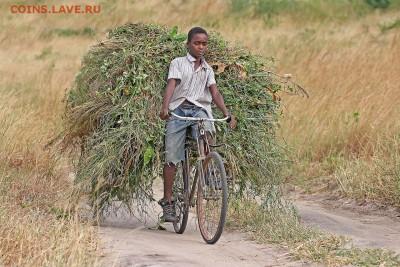 Схема коленно-рычажного механизма чеканочного пресса. - 1280px-African_boy_transporting_fodder_by_bicycle_edit