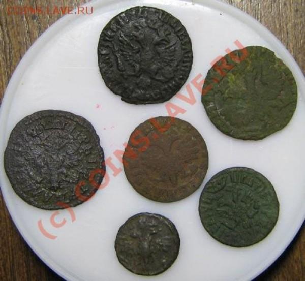 Петровские монеты - IMG_0285