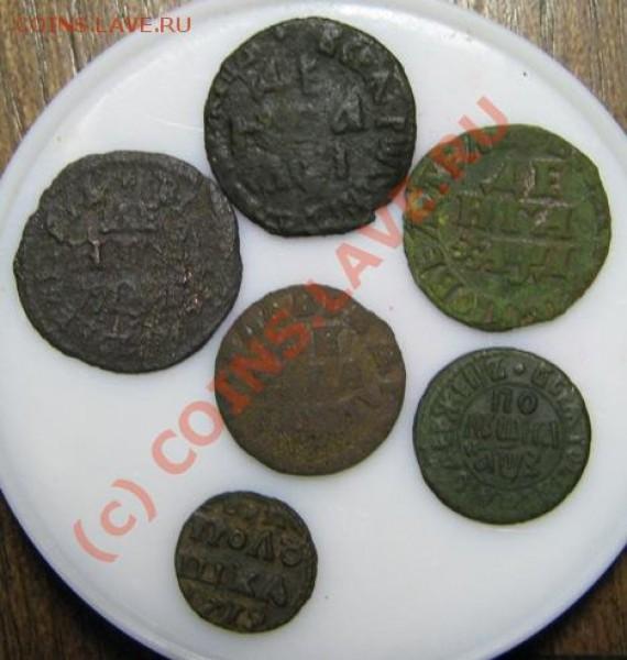 Петровские монеты - IMG_0284