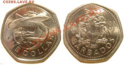 О фотографировании монет - 1_dollar_2008.JPG