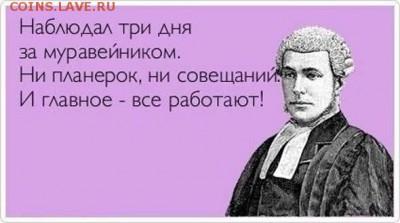 юмор - 00 Муравейник