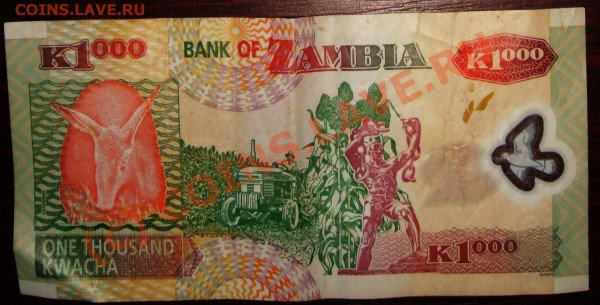 Оцените боны ЮАР, Замбии - замбия 2