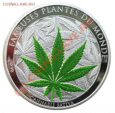 100 франков 2010 Бенин Культурные растения - бенин.JPG