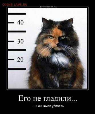 юмор - demotivatorium_ru_ego_ne_gladili_91840
