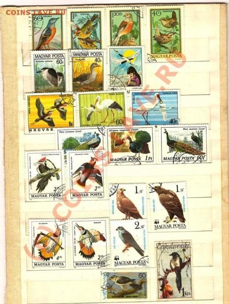 марки  почтовые - Изображение 177