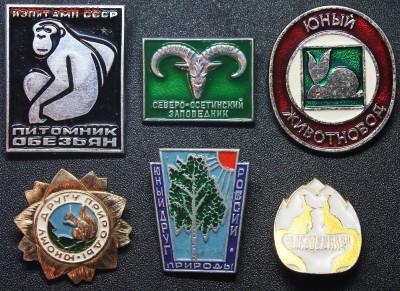 Нужны значки ФАУНА для выставки юннатам - Фауна