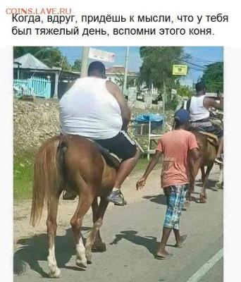 юмор - jvDU0OlSmjs